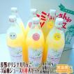 ギフト  長野県オリジナル品種りんご 3品種ジュース6本入りセット 送料無料
