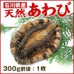 [石川県産]天然 活あわび(約300g)×1個