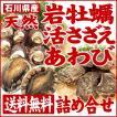 [石川県産]素潜り漁の天然物 殻付き岩牡蛎&活さざえ&活あわび詰め合せ(岩牡蠣5個・サザエ10個・あわび×2枚)
