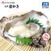 岩牡蠣 (天然 殻付き 生食用) 石川県産 特大×10個
