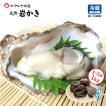 岩牡蠣 (天然 殻付き 生食用) 石川県産 お試し訳あり 3〜5個 合計1kg以上