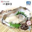 岩牡蠣 (天然 殻付き 生食用) 石川県産 お試し訳あり 5〜10個 合計2kg以上