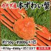 本ずわい蟹:約750g〜約800g×1匹