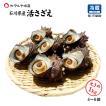 [石川県産]素潜り漁の活さざえ:大きめ 10個  詰合せ(1個130〜150g)