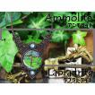 太古生命の奇跡・化石宝石『アンモライト』と『ラブラドライト』マクラメ編みネックレス2