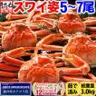 [かに カニ]蟹ミソまで新鮮、本ズワイカニ姿約3kg前後(ボイル/500gx6杯)[ワンフローズン品/冷凍便/送料無料]