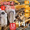 殻付き牡蠣 漁師直送 宮城県産 14kg 生食用 送料無料 旬 活 かき 生ガキ