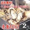 カンカン浜焼き牡蠣セット 2kg入 宮城県産 送料無料 旬 活牡蠣 牡蛎 生かき 生ガキ 生牡蠣