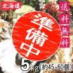 殻付き牡蠣 漁師直送 サロマ湖産 5kg 生食用 送料無料 北海道 旬 活 かき 生ガキ