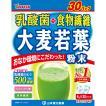 山本漢方製薬 乳酸菌 大麦若葉(徳用) 4g×30H