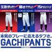 【大特価!】ミズノ 少年用スペアパンツ 野球 12JD6F8