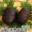 栄養満点 健康食 高級「天然岩もずく」(玉モズク)(冷凍) 少し大きめサイズ お買得2玉セット(浜坂産)