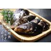 高級貝 イガイ(貽貝)(生)約500g程度(3〜8個程度入り)(浜坂産)