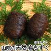 栄養満点 健康食 高級「天然岩もずく」(玉モズク)(冷凍)お買い得2玉セット(浜坂産)