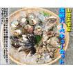 (送料無料)山陰浜坂港とれたて魚介満載「バーベキューセットA」