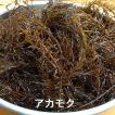 海草 朝とれ アカモク(生)約500g(山陰産) 今が旬 ネバリが出る海藻です。  ギバサ、神馬草(じんばそう)、銀葉草(ぎんばそう)、ぎばさ、ぎばそ