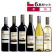 選べる チリワイン 6本セット テラ・ベガ TERRA VEGA 受賞 送料無料
