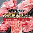牛肉 肉 A5ランク 和牛 訳あり 焼肉 セット 1kg 国産 A5等級 焼き肉 BBQ バーベキュー