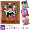 【メール便可】アイスティー カレルチャペック 紅茶