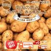 【予約2022年】新じゃがいも 送料無料 10kg M~3Lサイズ混合 赤土 九州鹿児島徳之島産 にしゆたか 贈物 長期保存 箱買い 南国野菜 産地直送 馬鈴薯 ばれいしょ