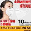 KN95 マスク 10枚セット 送料無料 即日発送 5層構造 3D立体構造 使い捨て 衛生