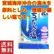 沖縄 塩 北谷の塩 5g×2袋セット お土産 送料無料