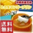 プリン マンゴー 沖縄県産マンゴープリン とろ生マンゴープリン(4個入)×3セット