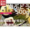 海ぶどう 沖縄 久米島産海ぶどう (500g) 海洋深層水 で有名な久米島産海ぶどう100% お土産 送料無料 おすすめ ビアナッツおまけ付き
