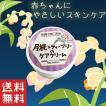 ボディクリーム いい匂い 保湿 月桃&ティーツリー の ケアクリーム プレゼント 沖縄県産 送料無料 おすすめ