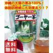 ゴーヤ ゴーヤ茶 健康茶 沖縄県産健康茶種入りゴーヤー茶 ティーパック 45g(1.5g×30包入) お土産 おすすめ