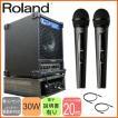 ワイヤレス受信機収納ラック付き ハンドワイヤレス2本 スピーカーセット Roland出力30Wアンプ