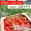 宮城県産/ジャム加工用イチゴ(小粒、ばら詰め)4箱(3.2kg)