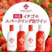 イチゴ スパークリング 缶 ワイン ミガキイチゴ・カネット 4本セット