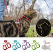 4 色 ナイロン 反射猫子犬 ハーネス リーシュ リード セット ウォーキング 調節可能 な ペット 牽引 ベスト ベルト ため 猫 子猫 ギフト ID タグ グループ上