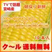 TVで話題の宮崎産・甘〜いフルーツとうもろこしゴールドラッシュ日本最速旬