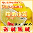 5kg・JA光センサー選果!大玉宿毛小夏(土佐小夏)製品箱入・高知産・送料無料
