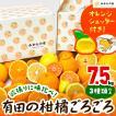 【付録付き】有田の柑橘ごろごろ゛3種以上  AB品 7.5kg 秀優品混合 柑橘 フルーツ 果物 季節限定 箱買 送料無料 贈り物 贈答用 プレゼント ご当地