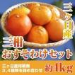 三ヶ日産 三柑おすそわけセット 三ケ日柑橘類の盛り合わせ 約4kg