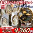 (送料無料)牡蠣かんかん焼きセット(殻付き牡蠣12個)&ムール貝(小1kg)〜BBQ/産地直送/鍋料理にも最適/カンカン/ガンガン