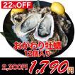 牡蠣おかわりセット(殻付き牡蠣12個)〜産地直送/鍋料理にも最適