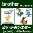 ポケットモンスターベストウィッシュ! 41模様 DVDパッケージ仕様 ECD092 刺繍カード ブラザー刺しゅうカード ブラザーミシン brother