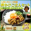 お米 30年産 熊本 阿蘇 ギフト 2kg 卵かけごはん コシヒカリ A-1セット