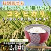 熊本 阿蘇 コシヒカリ 5kg 内田農場 令和2年産 お米ソムリエが手掛けた米
