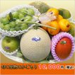 豊洲市場から直送 国産 旬のフルーツ かご盛り 10,000円セット 果物の盛り合わせ 季節のご挨拶 贈り物 手土産 ギフトに 豪華な籠盛りを