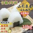 新米 米 お米 5kg×2 はえぬき  玄米10kg 令和元年産 山形産  白米・無洗米・分づきにお好み精米  送料無料 当日精米 あすつく
