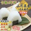 新米 米 お米 玄米5kg はえぬき 令和元年産 山形産  白米・無洗米・分づきにお好み精米  送料無料 当日精米 あすつく