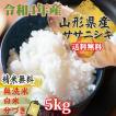 新米 米 お米ササニシキ  玄米 5kg 令和元年産 山形産  白米・無洗米・分づきにお好み精米  送料無料 当日精米 あすつく