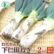 有機栽培(オーガニック)下仁田ねぎ2kg(8〜12本入)【送料無料】