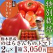 野原さんのトマト(レディファースト)2kg  【送料無料、無化学肥料・農薬7割減の特別栽培】