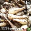 有機らっきょう3kg・鹿児島産(国産)有機栽培(有機JAS)農薬化学肥料不使用 砂付き(土付き)・送料無料